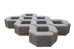 Grastegel Beton 40x60x10 cm (Redsun)