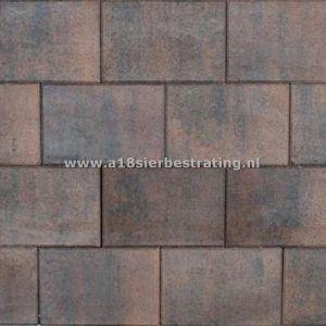 Tremico 20x30x6 cm Brons